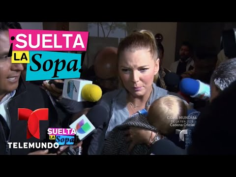 Marjorie de Sousa respondió a su denuncia por violencia familiar   Suelta La Sopa   Entretenimiento