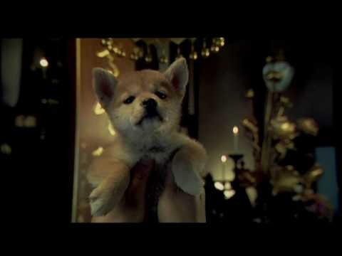 Hachiko - Trailer Español Latino Hd video