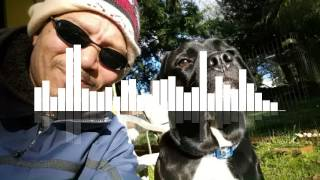 Dog Walk Music by Tukso Okey