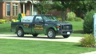 Buffalo Lawn Care  | Lawn Maintenance Buffalo NY | Seasonal Lawncare