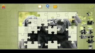 Cute Dogs And Puppies Fun Jigsaw Puzzle Video For Kids Apps Gameplay