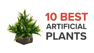 10 Best Artificial Plants for Home Decor in India with Price