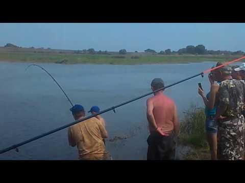 март рыбалка на десне