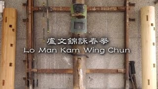 盧文錦詠春拳館回顧影片 Lo Man Kam Wing Chun Recalling Movie