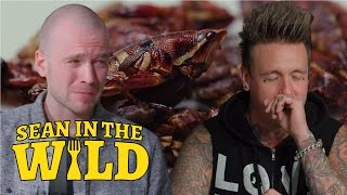 Sean Evans and Papa Roach Eat Insects | Sean in the Wild