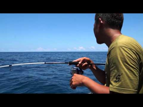 SENSES Fishing Trip In Pekan Offshore & Kenyir DAM (english version)