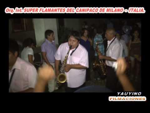 SANTIAGO 2013 EN VIGEVANO   NOVARA   ITALIA  FLAMANTES DEL CANIPACO