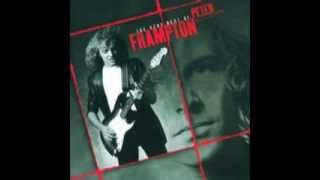 Watch Peter Frampton Its A Sad Affair video