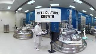 Engineering Cells to Make Biologics: Cell Culture Development
