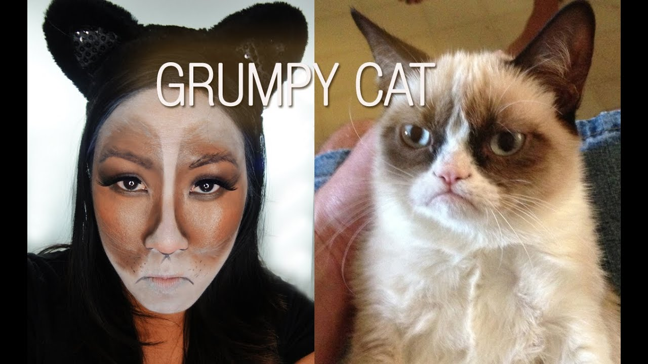 Halloween Makeup Grumpy Cat