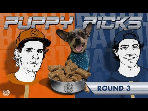 BATB 11 | Puppy Picks - Round 3: Week 2