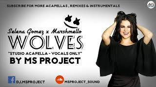 Download Lagu Selena Gomez, Marshmello - Wolves (Studio Acapella - Vocals Only) Gratis STAFABAND