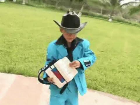 video del camaleon