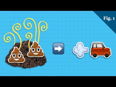 Could Poop Power Our Cars?