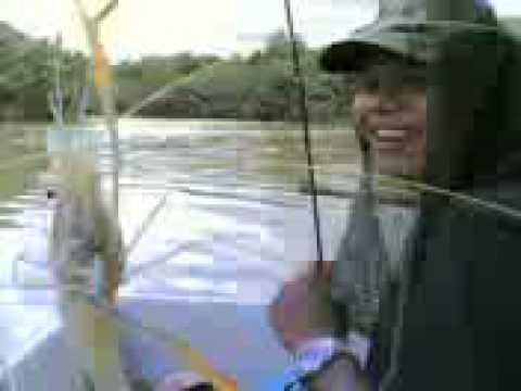 Pemburu udang galah