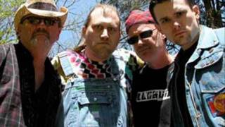 i don´t feel like dancing hayseed dixie