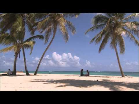 Vakantieliefdes | Net5