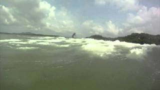 surfing tamarindo costa rica HD