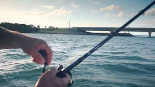 :: Sport Fishing TV :: Tarpon Fishing