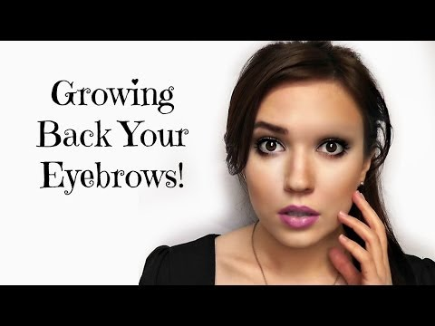 Growing Back Your Eyebrows