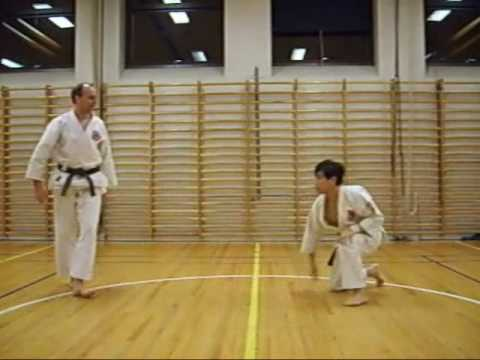 Aikijutsu training 11 Image 1