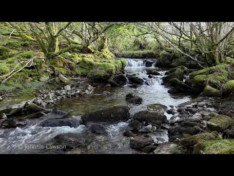 RELAXING SOUNDS FOR SLEEPING-3D Image-Water Flowing-Waterfall Sound-Bird Song Noises-Nature Sounds