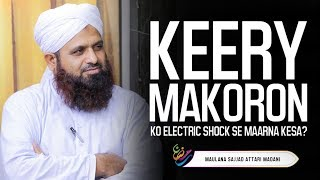 Keeray Makoron Ko Electric Shock Se Maarna Kesa ? | Maulana Sajjad  Attari
