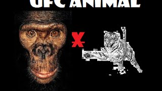 UFC Animal : Macaco x Tigre