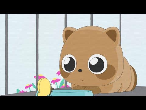【泣ける自主制作アニメ】切なくて悲しすぎる「ぼくとタヌキの約束」毛皮と動物のお話