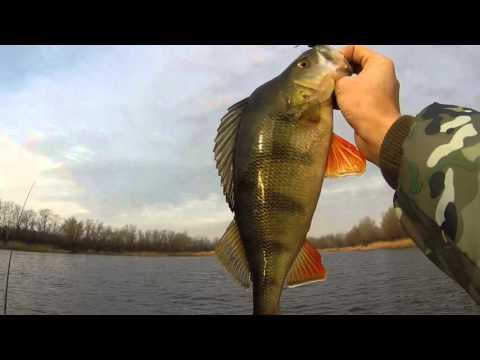 рыбалка на р орель