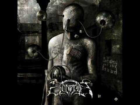 Zonaria - The Last Endeavour