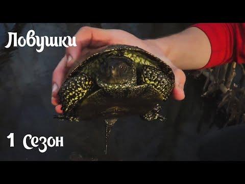 черепашка для рыбалки