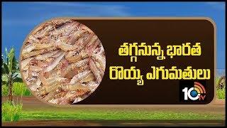 తగ్గనున్న భారత రోయ్య ఎగుమతులు... | Indian Prawns Exports