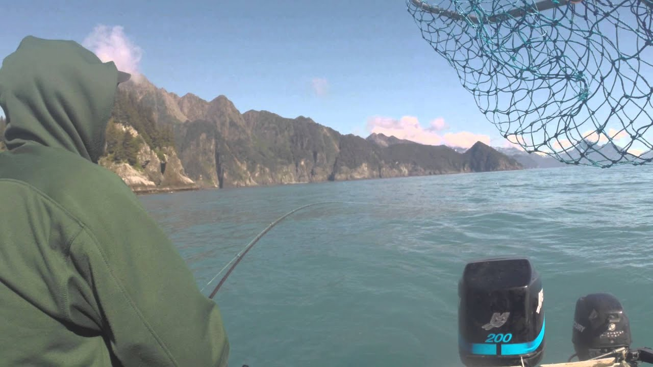 Catching Silver Salmon in