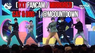 (TXT FanCam / Mirrored)  'Cat & Dog '   @MCOUNTDOWN