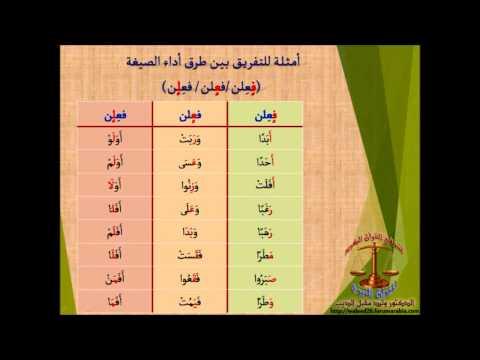 طالبات بعض معاهد القرآن المصرية يتدربن على صيغ