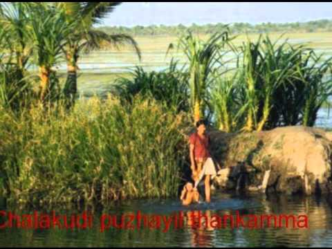 Chalakkudi Puzhayil Thankamma video