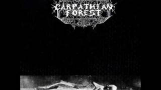 Watch Carpathian Forest In Silence I Observe video