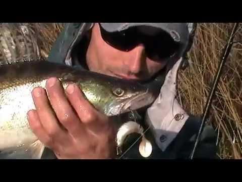 рыбалка в бобруйске видео