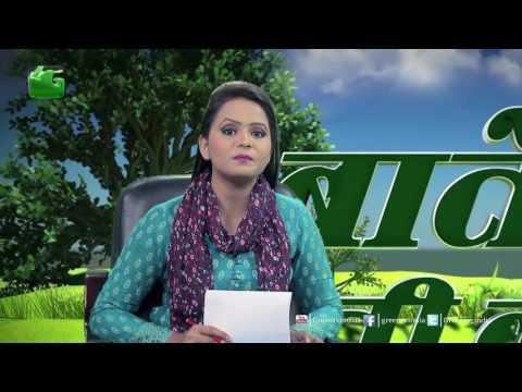 Baatein Kheti Ki: Baigan Aur Tamatar Me Lagne Wale Rog Aur Keet  - Full Episode Green TV