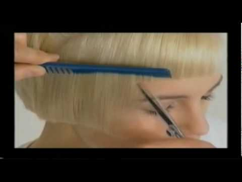Vidal Sassoon Icon One Long Hair Cut