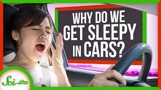 Carcolepsy: Why Do We Get Sleepy in Cars?