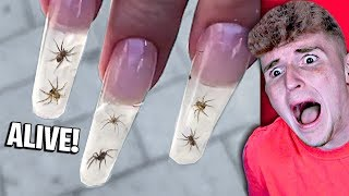 SHOCKING Nail Art That Should NOT EXIST..
