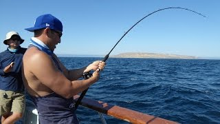 Popper fishing in Panama with Tropical Sportfishing Panama