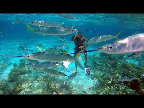 Snorkeling Sandals Negril Jamaica 2015