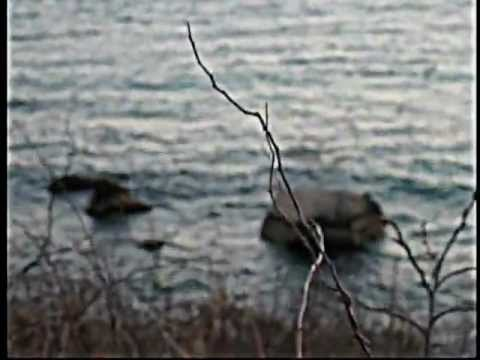 Black Francis - The Water