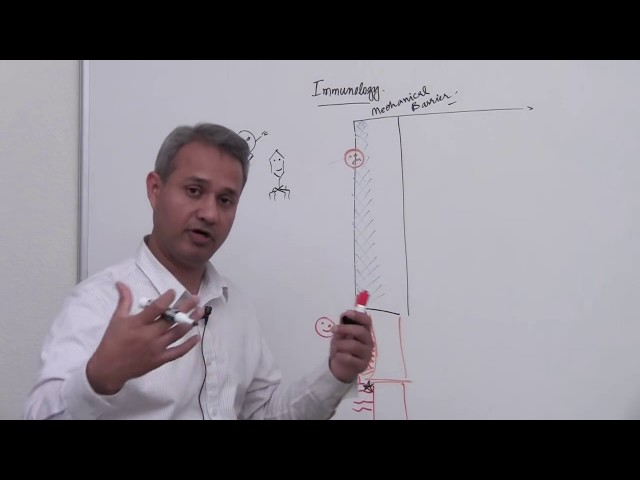 Immunology Lecture 1 part 1