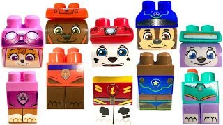 Best Learning Colors for Children Paw Patrol Wrong Heads Ionix Blocks Zuma Everest | Fizzy Fun Toys