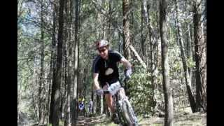 Beechworth MTB 6 Hour Enduro   Aug 2013