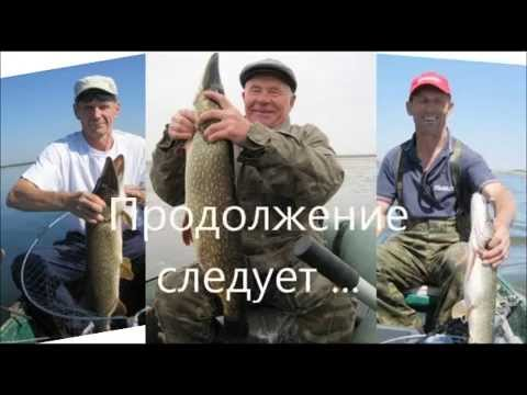 платная рыбалка в павловском районе краснодарского края